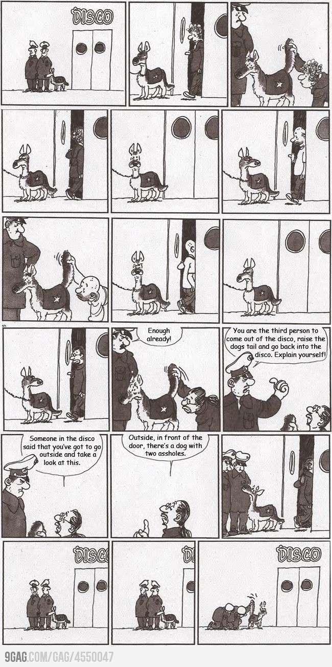 Police Dog Police10