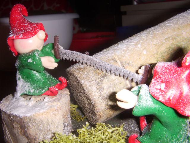 Elfi natalizi Dscn4229