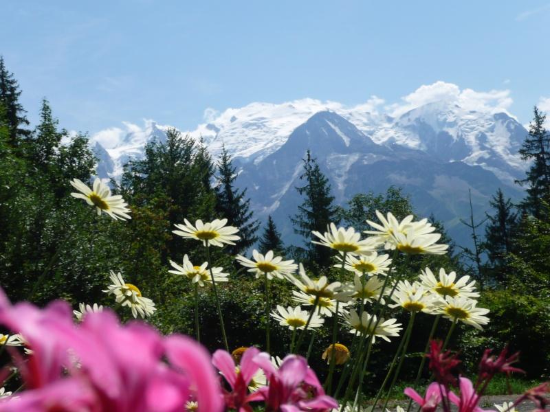 le mont blanc  P1000311