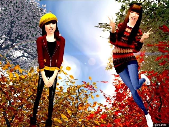 Le jardin de Camomilles ♥ Automn11