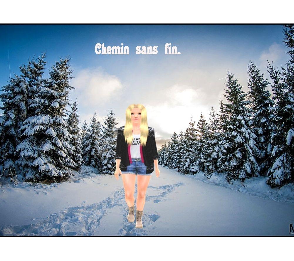 Le jardin de Camomilles ♥ Chemin10
