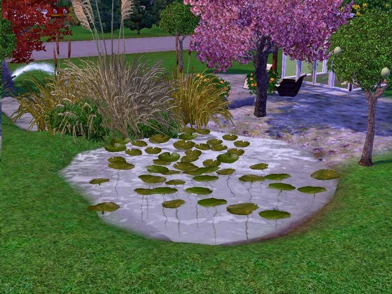 [Intermédiaire] Construire une piscine biologique Ts3w_213