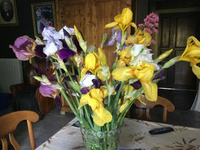 beau bouquet - Page 2 06343310