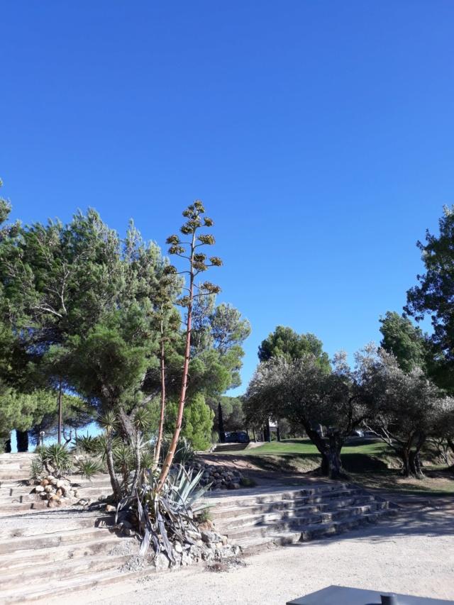 Randonnée dans l'Aude  112eea10