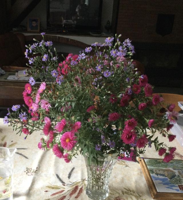 beau bouquet - Page 15 741d9210