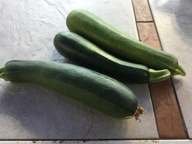Légumes 2018  /2019 / 2020 à cazo  - Page 12 7a517810