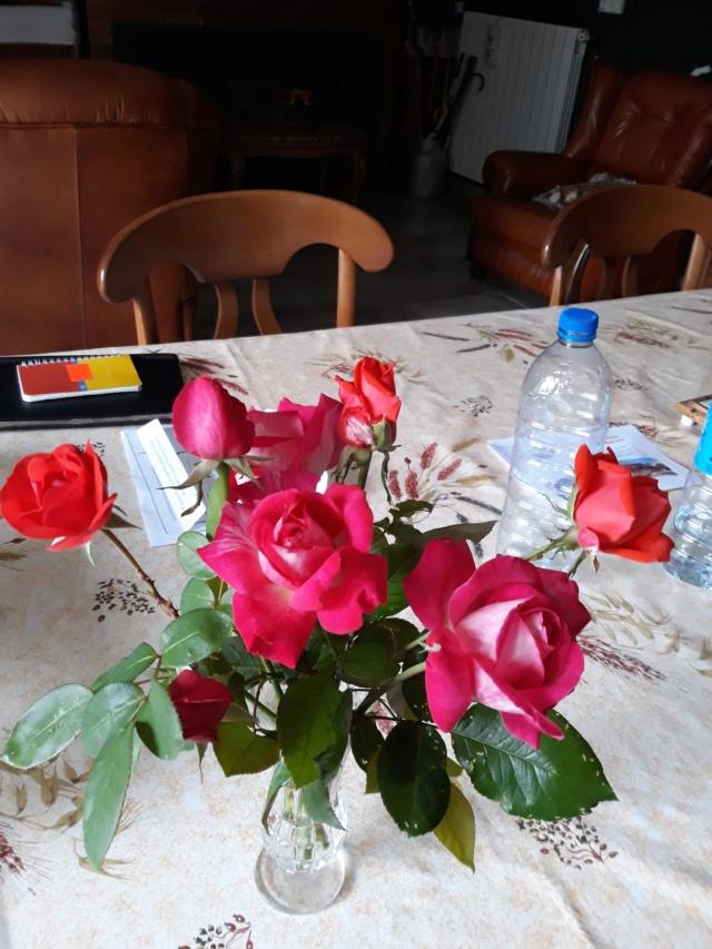 beau bouquet - Page 9 A6899c10