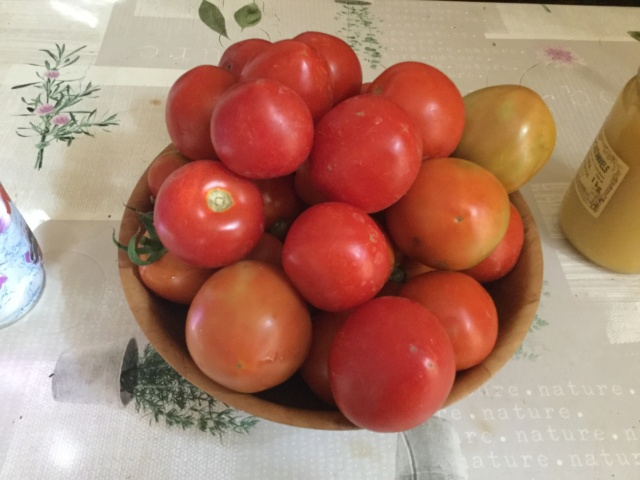 Tomates 2018 - Page 4 Fd114b10