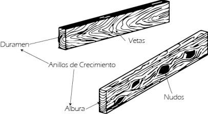 Vetas madera