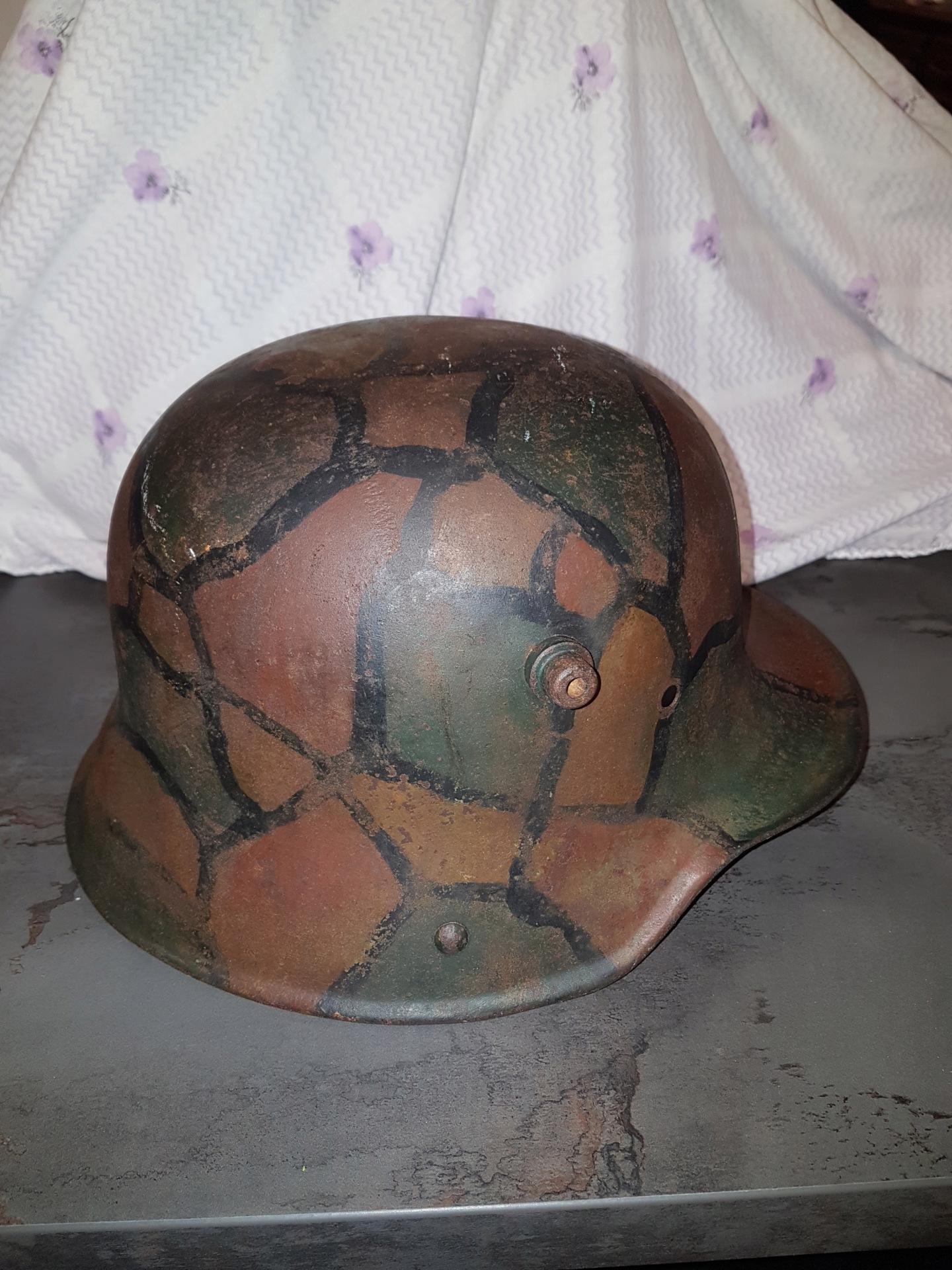 Petite coque tortue w1 20191559