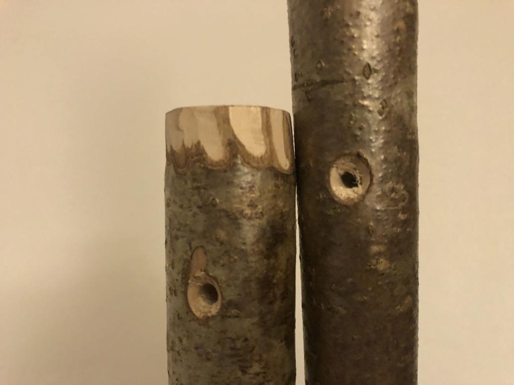 Comment se fabriquer un bâton de randonnée  17f5c810