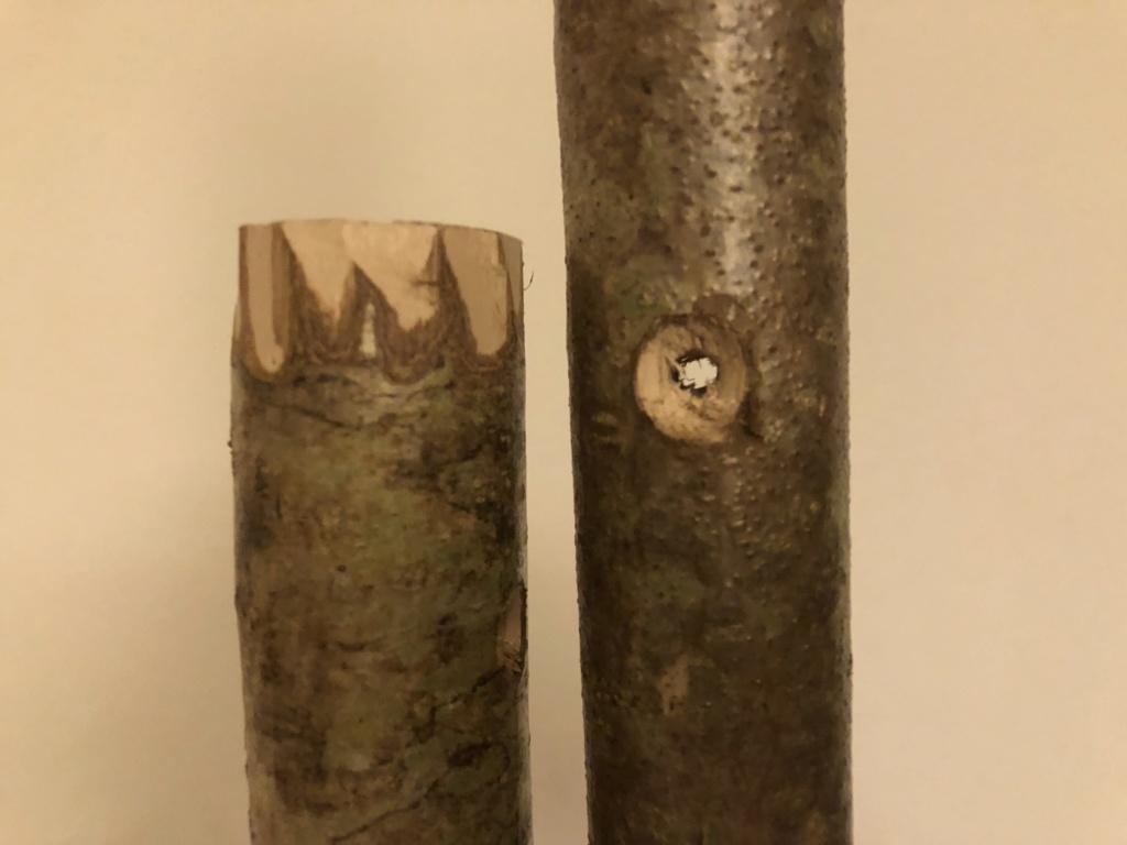 Comment se fabriquer un bâton de randonnée  83fe5310