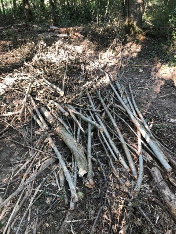 Comment se fabriquer un bâton de randonnée  Bbf15b10