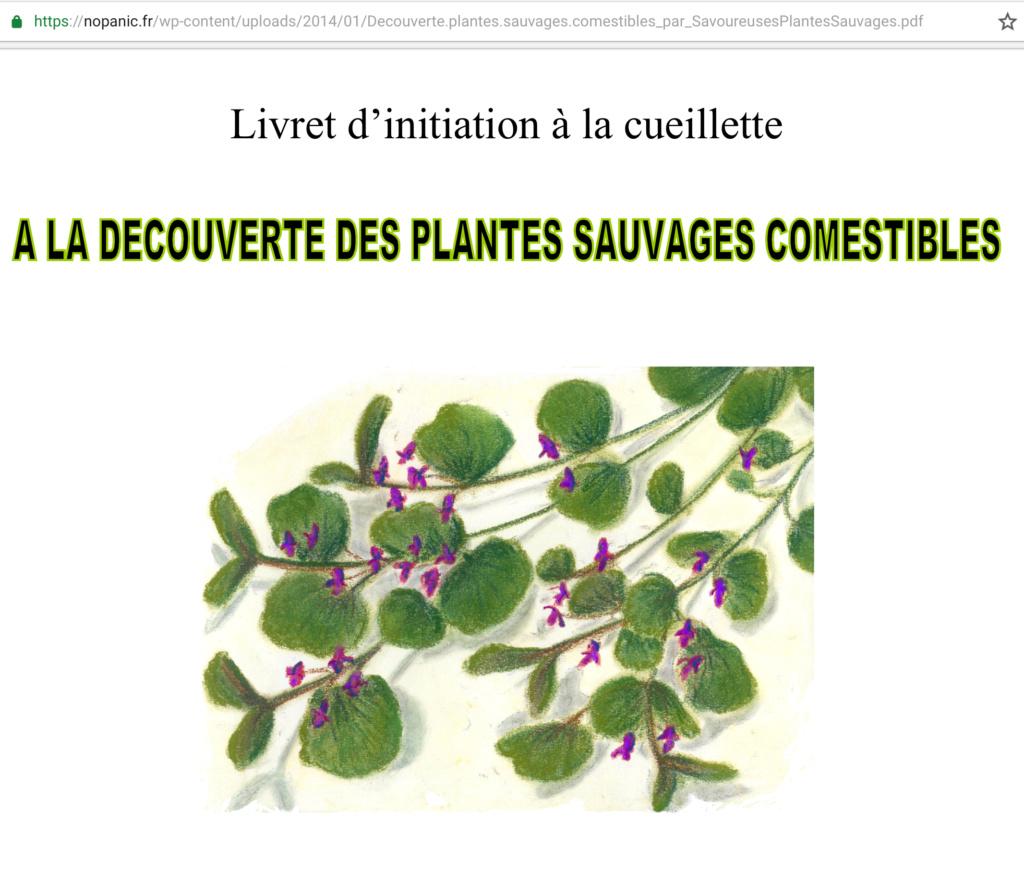 reconnaître les plantes sauvages comestibles Fa53fe10