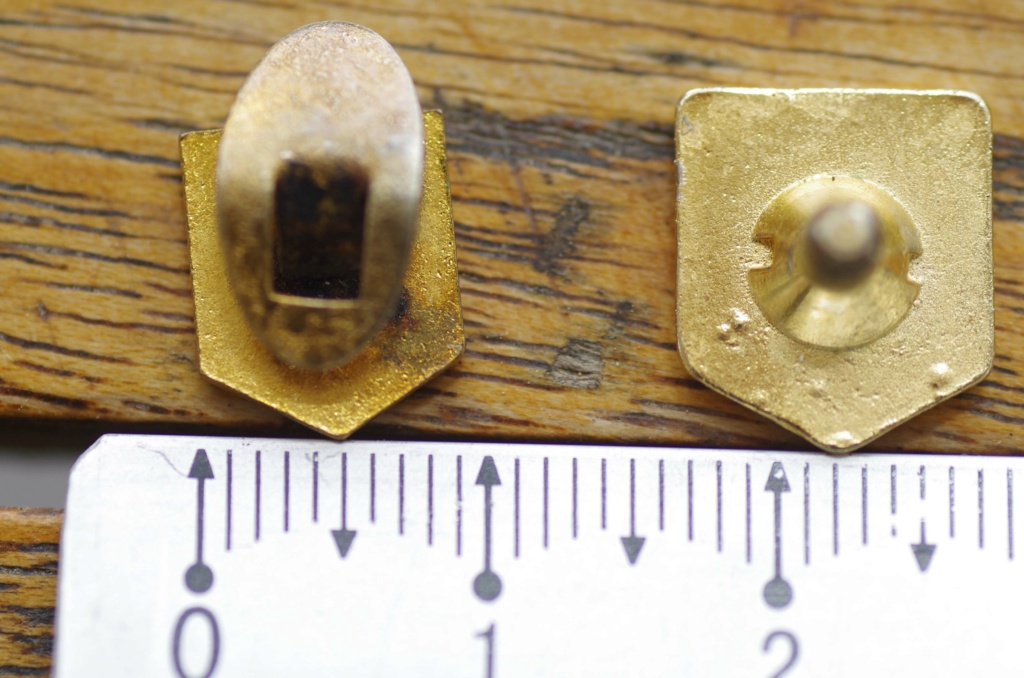 Micro insigne DB Pk5_7712