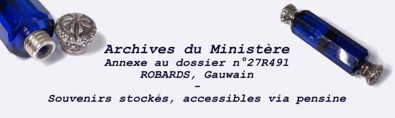 Archives du Ministère de la Magie - Annexe au dossier n°27R491 - ROBARDS, Gauwain Souven10