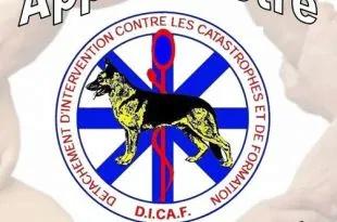 D.I.C.A.F. Détachement d'Intervention contre les Catastrophes & de Formation Dicaf-11