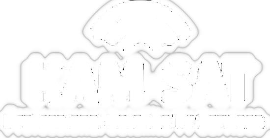Kam-Sat (Angleterre) Logo32
