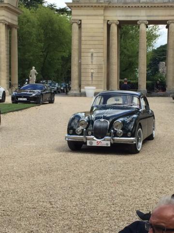 Concours d'élégance aux 50 ans du Club Jaguar France Img_1435