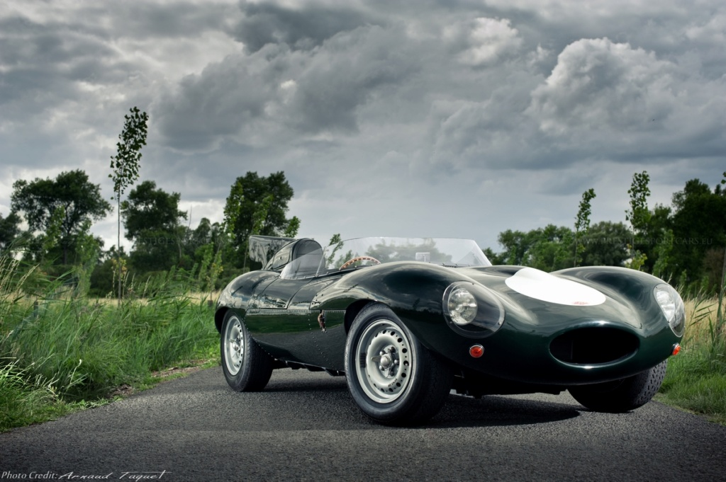 Jaguar type D Psc_3610