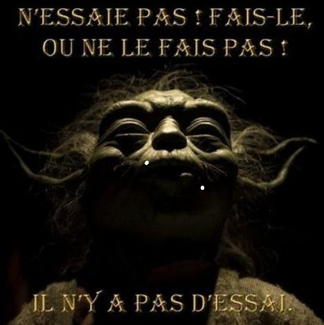 Conseil du maître Yoda... tu suivras Captur28