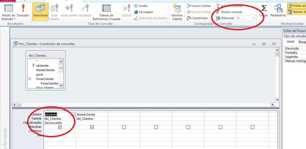 Copiar dados do último registo  do  form Consul10