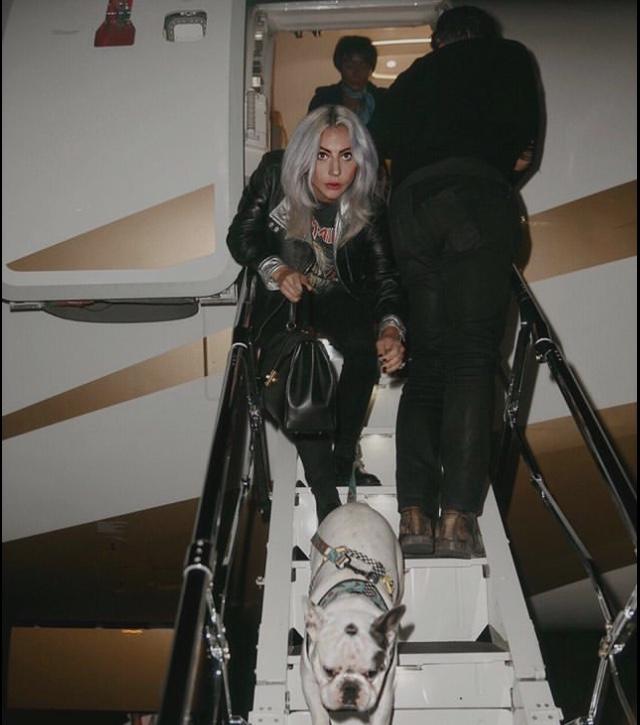 GloriaGaynor - Lady Gaga - Σελίδα 28 D6e41c10