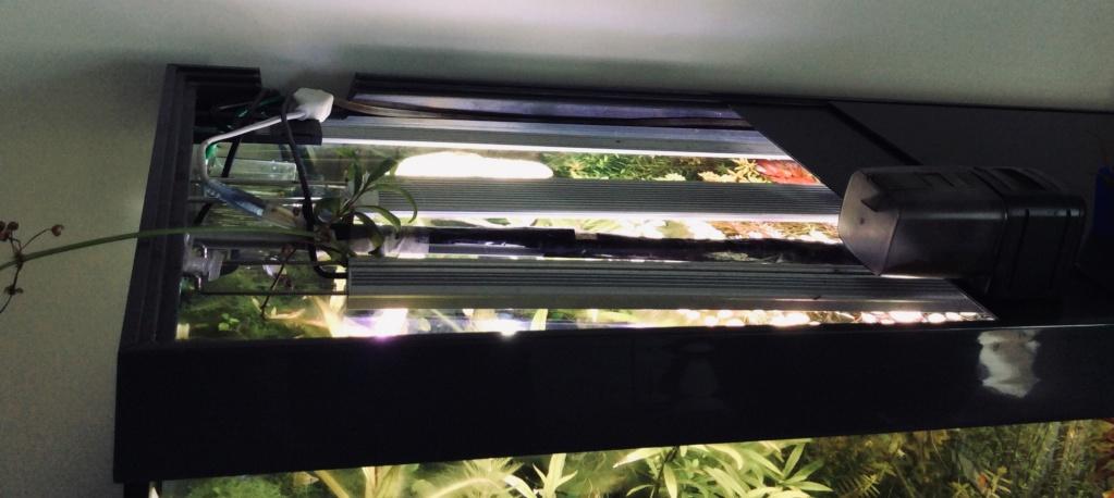 [A VENDRE] Aquarium EHEIM 240 L + meuble entièrement équipé  0c4d1110