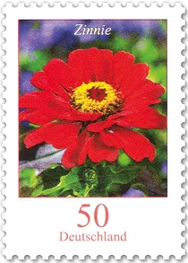 Suche Tausch Gartenblumen aus 2016 Flor1111