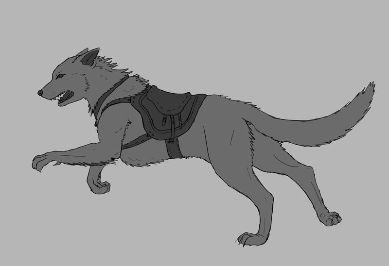 [Hípica de los Queridos]  Un lazo inesperado de un lobo poco común. Wolf_w10
