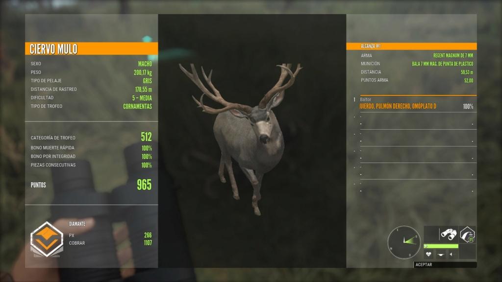 Debate: ciervo mulo, antes y ahora Mulo110