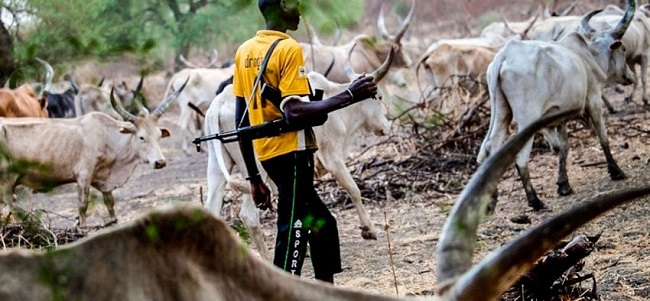 Suspected Fulani Gunmen Kill Pregnant Woman, Rape Others In Nasarawa 5b7a4410