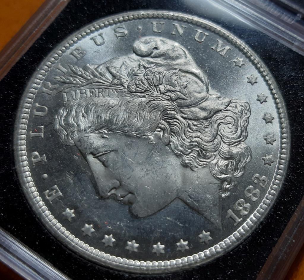 Morgan Dollar Carson City Mint 20190812