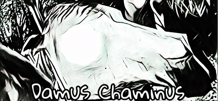 Dossier de Paulus von Lafayette Chamus10
