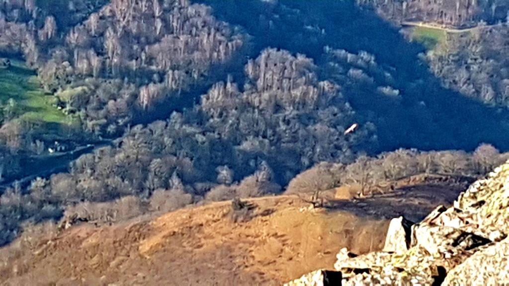 Petite virée pays basque 20190221