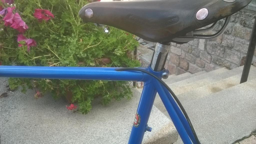 Le vélo bleu... Wp_20110
