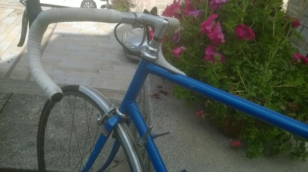Le vélo bleu... Wp_20112