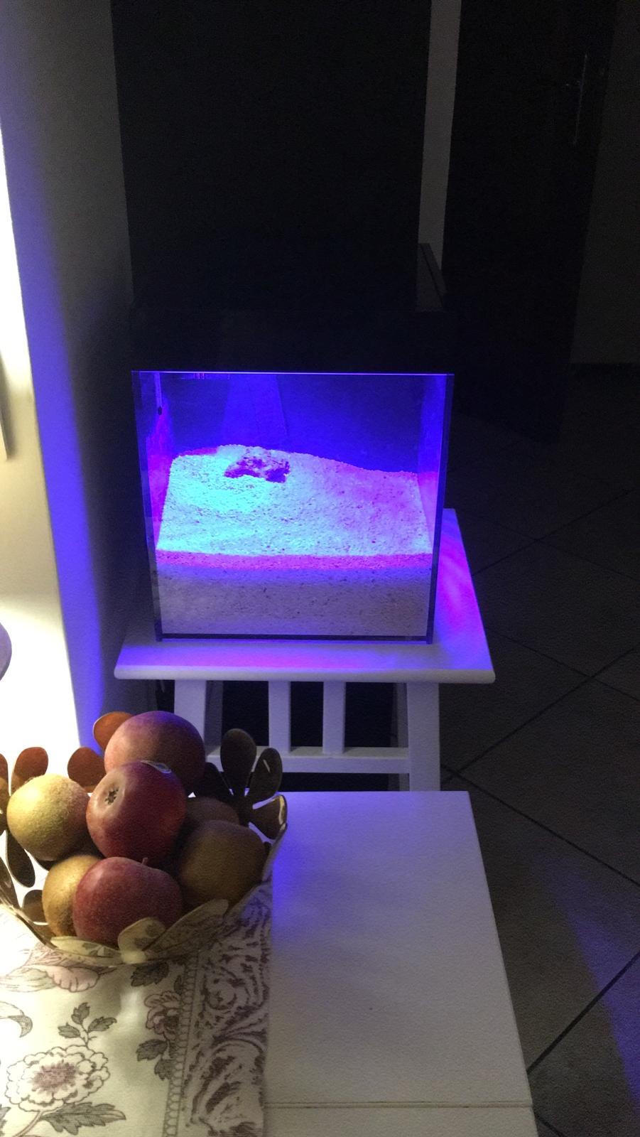 Cube 13 litres 75701f10
