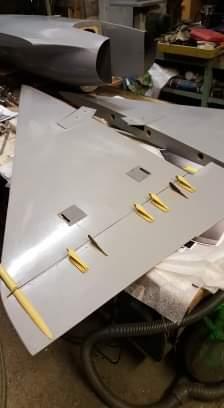 Mirage 2000 aviation design  - Page 2 Receiv79