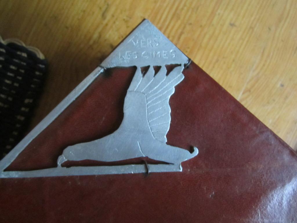 insigne fabrication local sur livre en cuir mehariste?scout? Img_5119