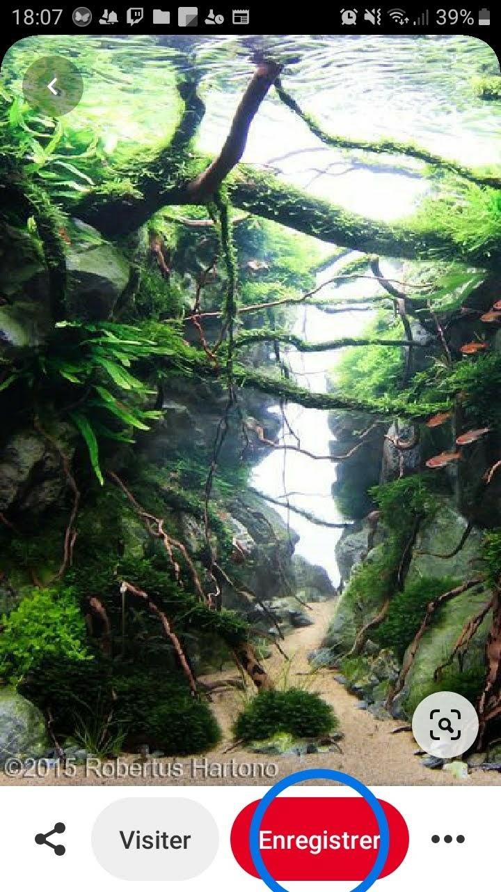 Création d'un aquarium 50x50x50 Screen11