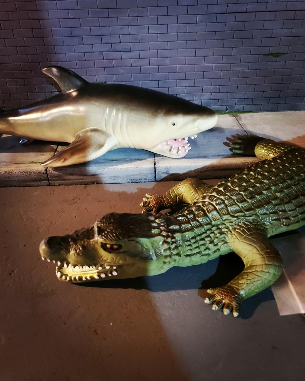 It's a Bigger Shark! Img_2061
