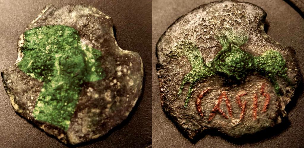 Semis de Carisa. Rgb218