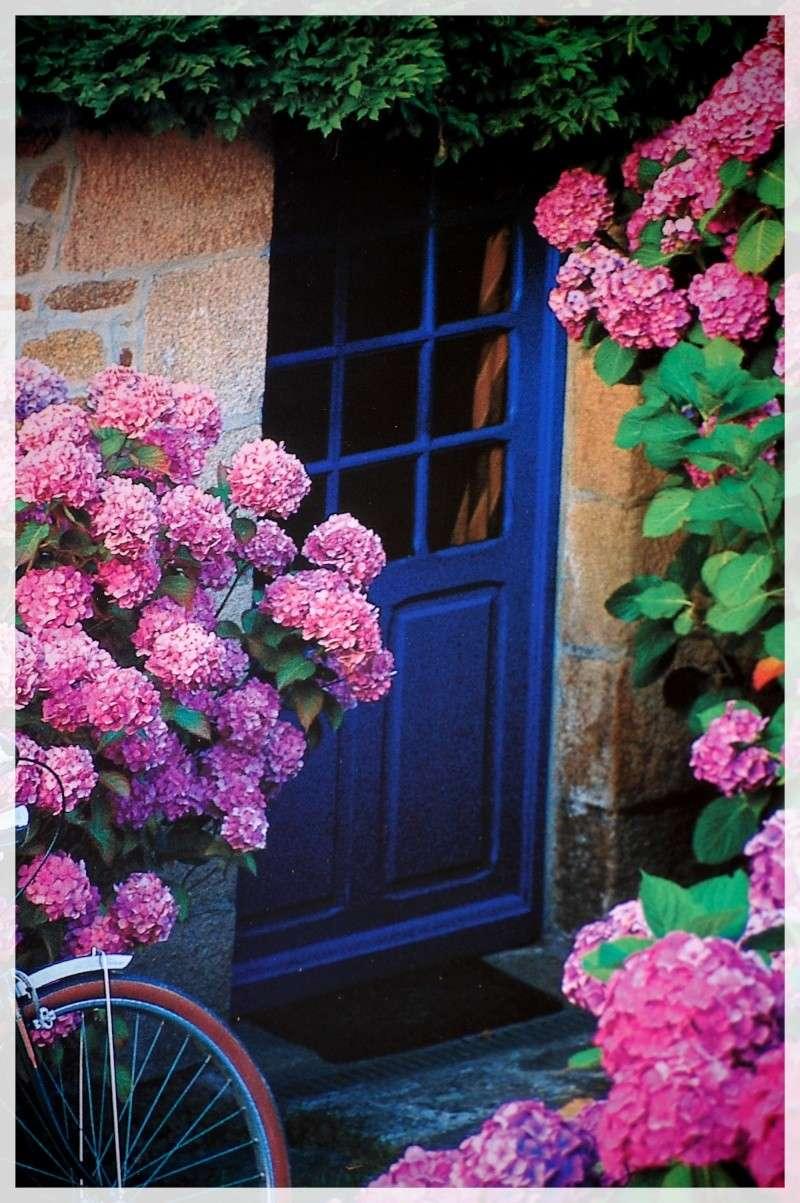 vieilles pierres et fleurs! Aout_115