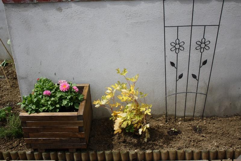 La terrasse 10_jui13