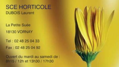 VORNAY - SCE HORTICOLE - Laurent DUBOIS - Horticulteur. Maraîcher Vornay13