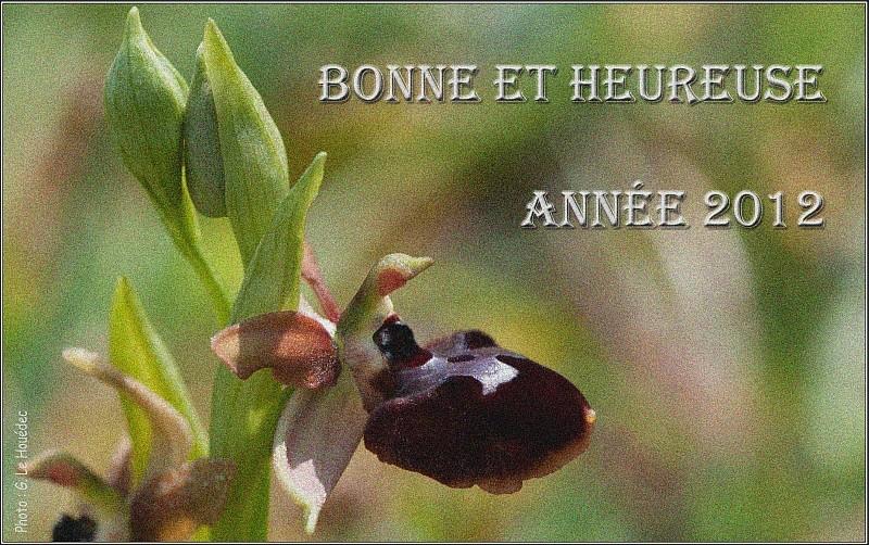 BONNES FETES...! - Page 2 Vaux_210