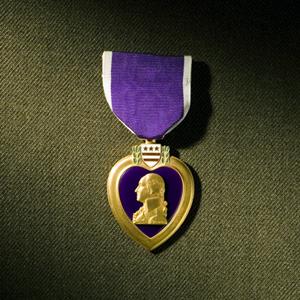 L'histoire d'un soldat parmi d'autres. Purple11