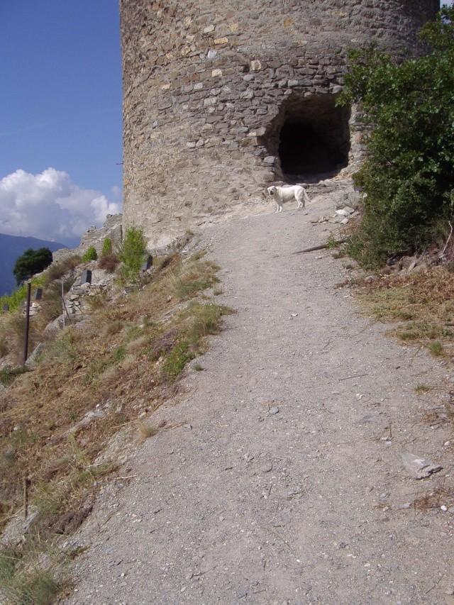 Un petit tour dans les steppes suisses... Pa290011