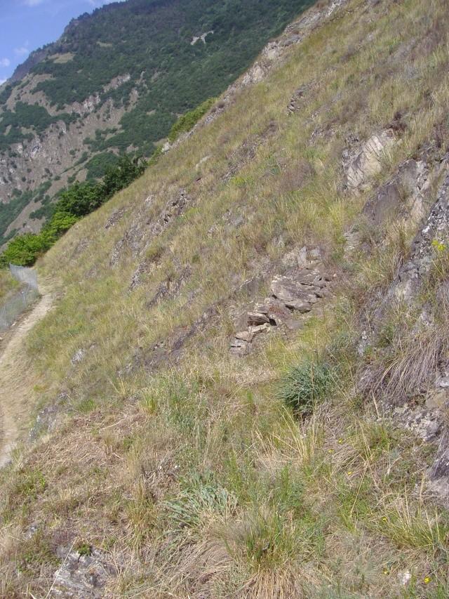 Un petit tour dans les steppes suisses... Pa290012